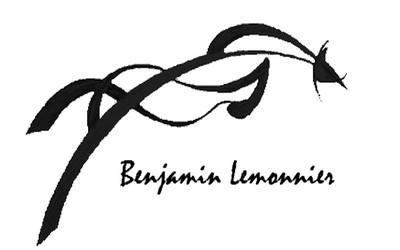 Benjamin Lemonnier, cavalier professionnel, prestataire de services, se déplace dans tout le Morbihan et se met à votre disposition en vous proposant
