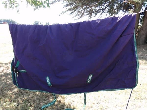 Séchage naturel afin que les couvertures cheval conservent toutes leurs propriétés techniques. Les couvertures sont ensuite emballées sous plastique pour faciliter leur stockage jusqu'à la prochaine utilisation.
