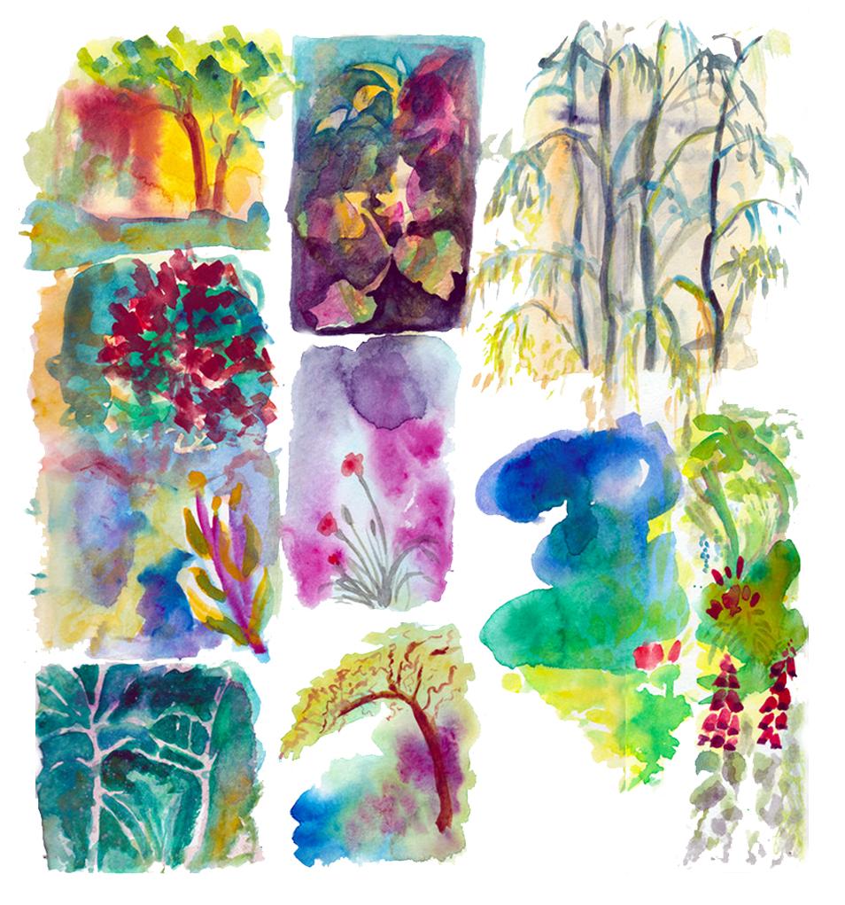 garden sketches.jpg