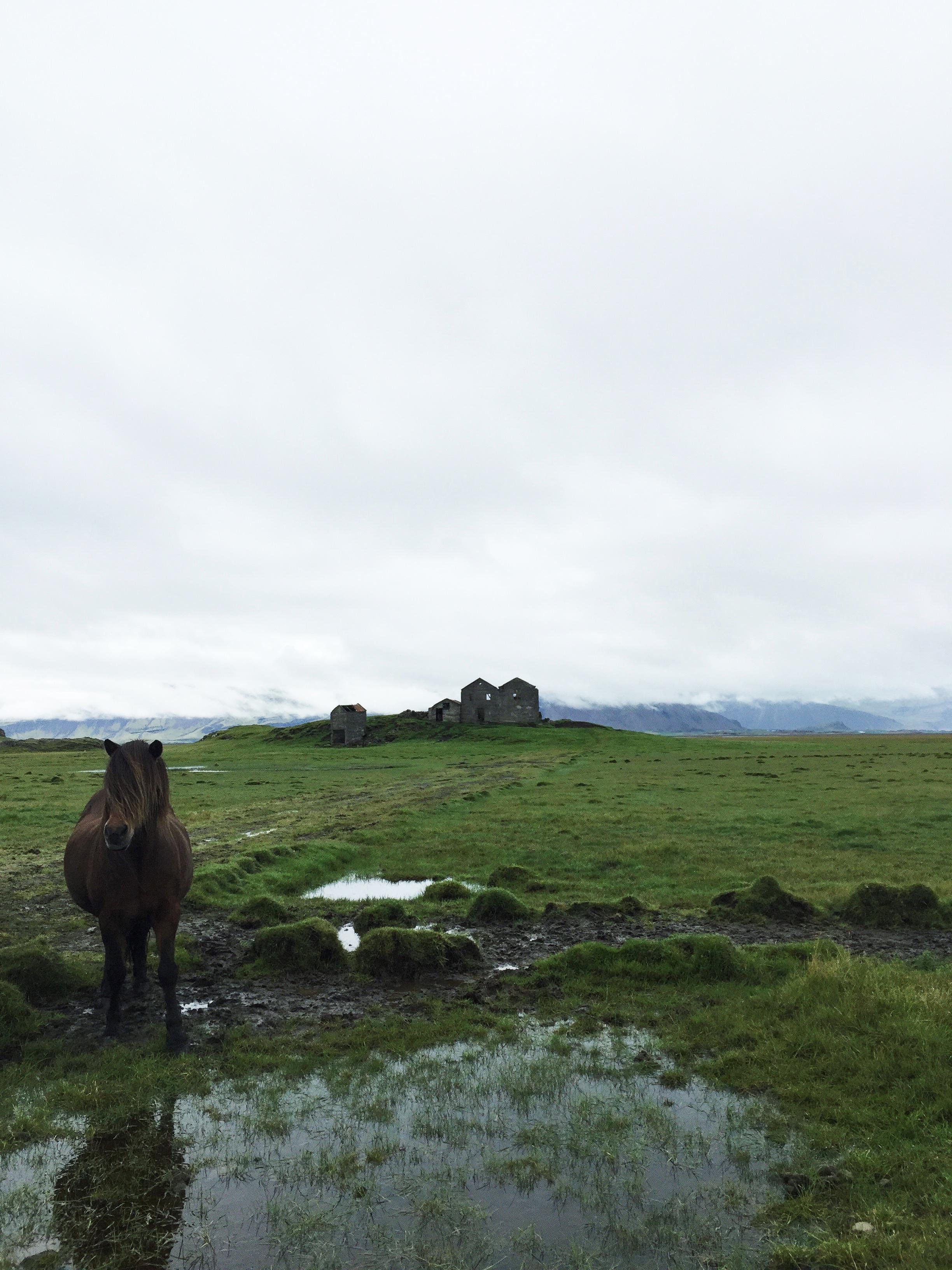 Abandoned farm, Southeast Iceland