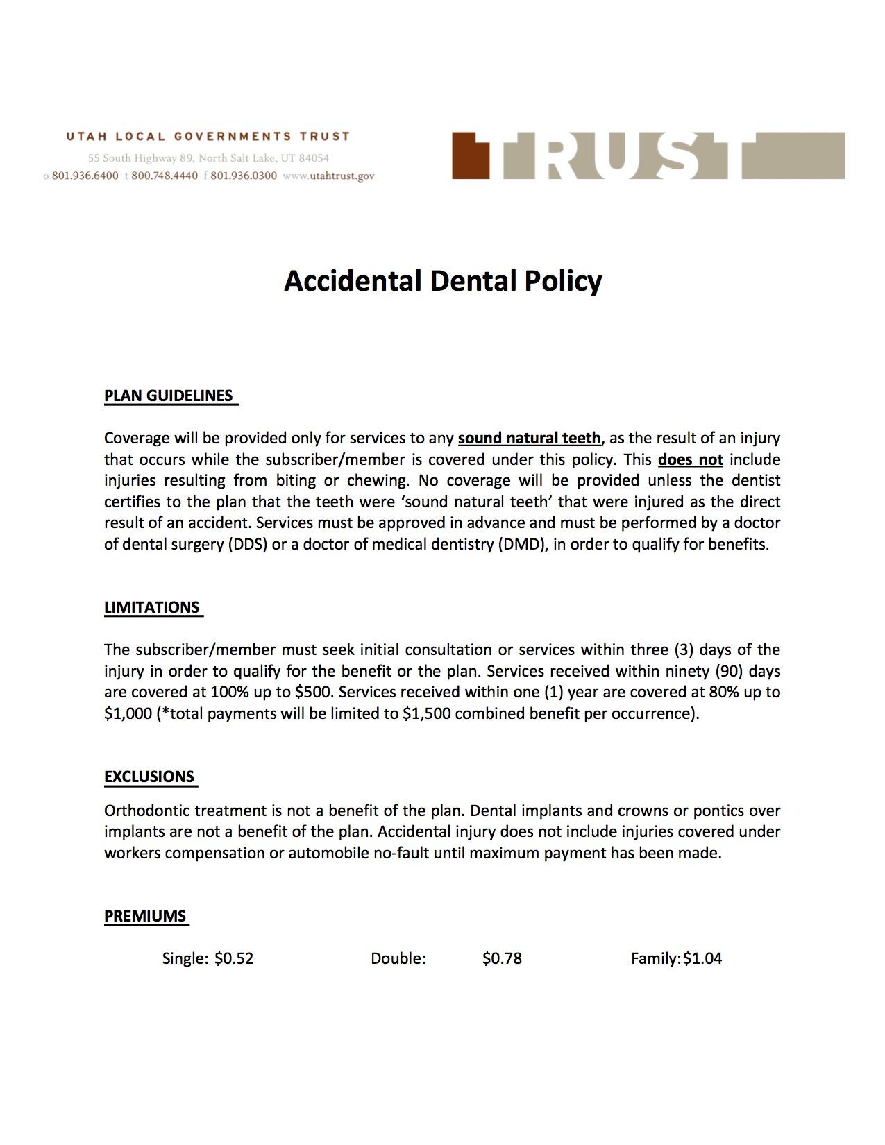 Accidental Dental Flyer
