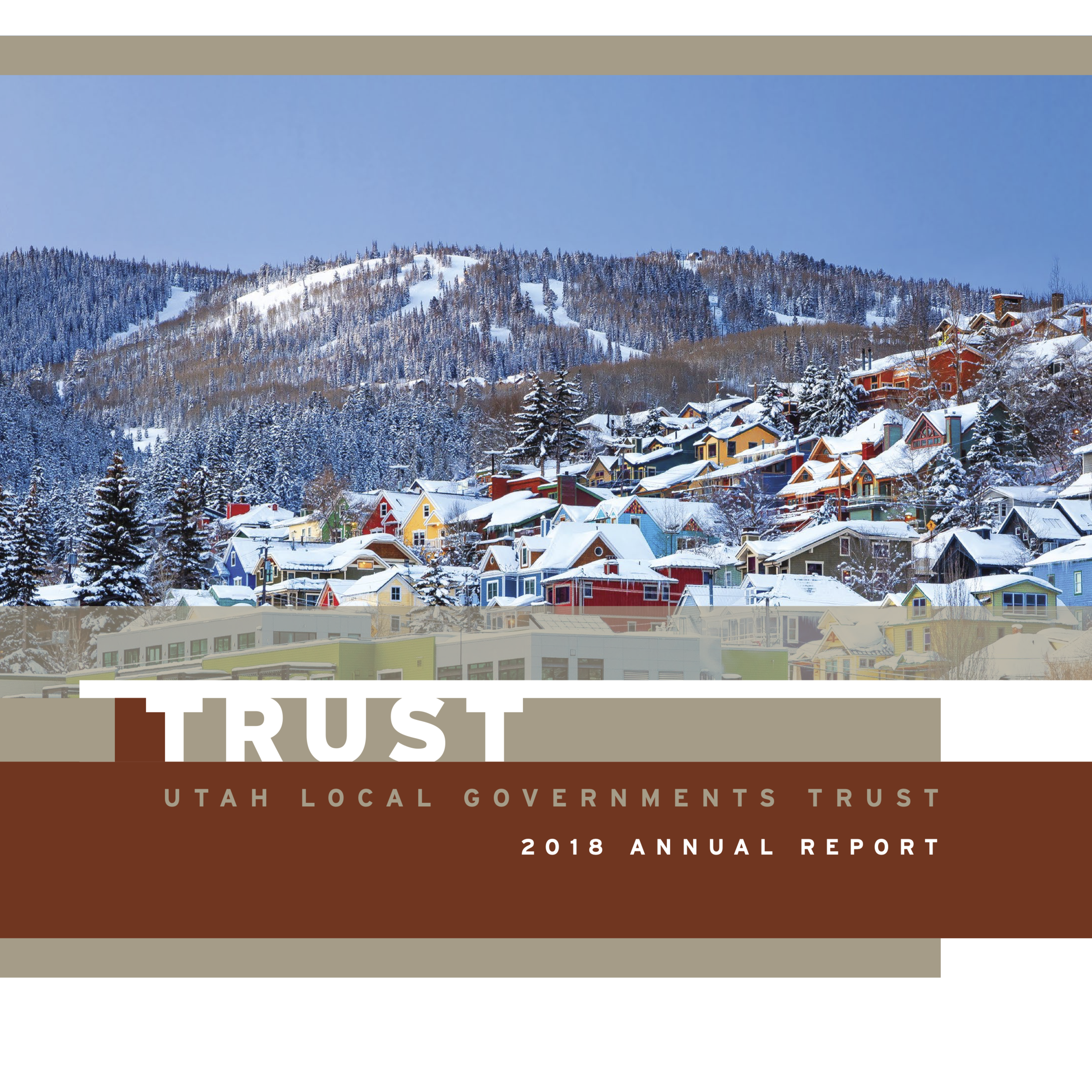 Trust Annual Report 2018 page.png