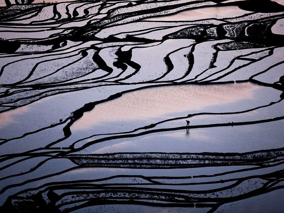 farmer-rice-terraces-china_46133_990x742.jpg