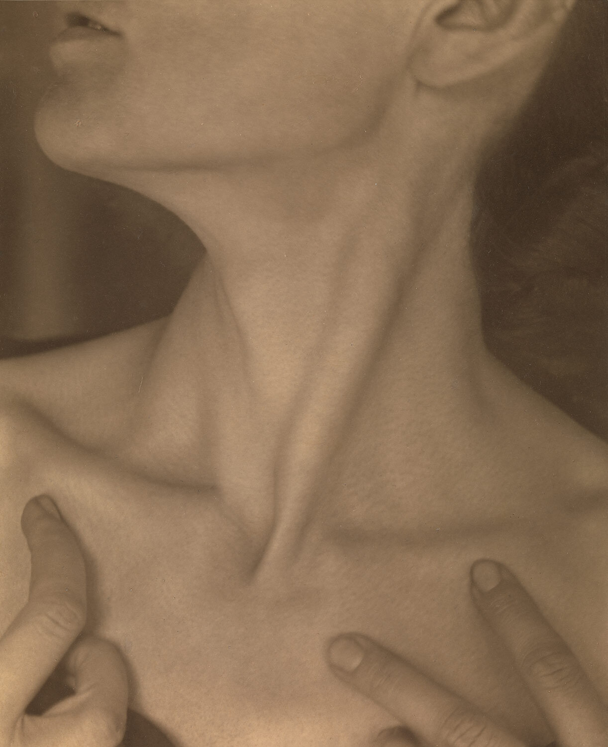 """...and your very flesh shall be a great poem and have the richest fluency not only in its words but in the silent lines of its lips and face and between the lashes of your eyes and in every motion and joint of your body.""    Walt Whitman  Photograph by Alfred Stieglitz"