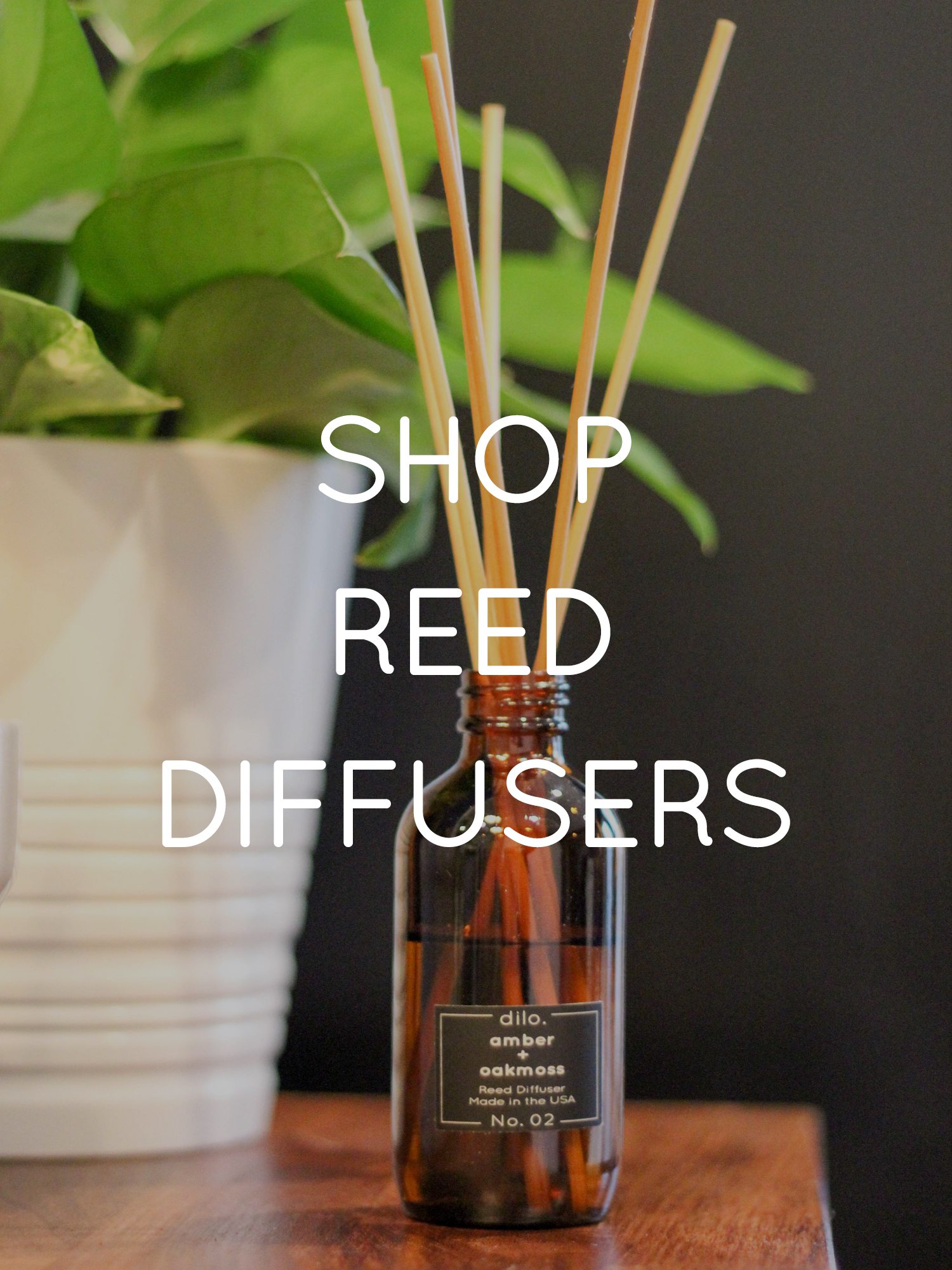 SHOP REED DIFFUSERS.jpg