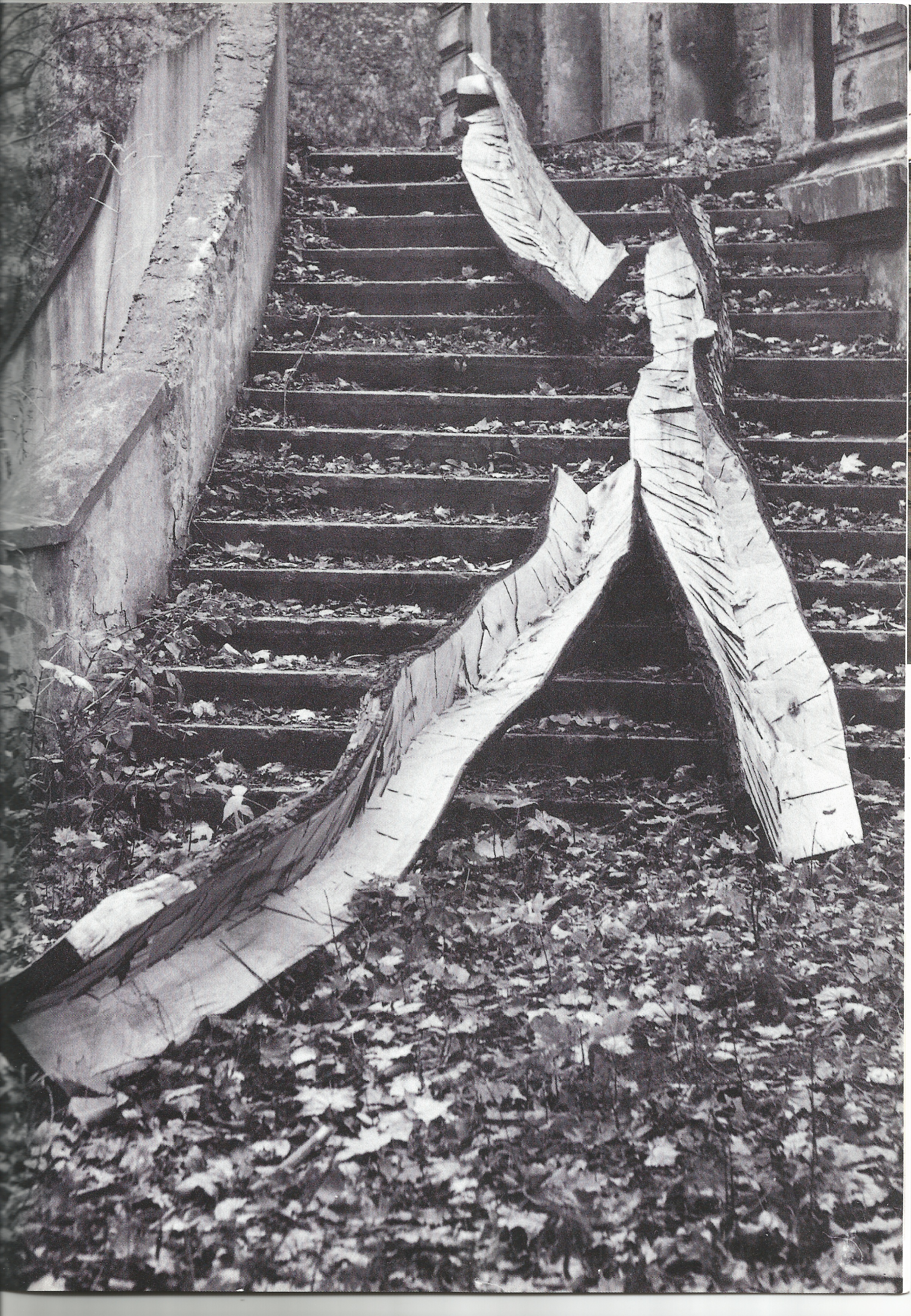 """Maple Cascade , 1993, 14 feet long, 14 feet long, 12 feet long, maple wood. Featured in """"Construction in Process IV – My Home is Your Home"""" outside Grohman Palace, Lodz, Poland in 1993. Photograph by Leszek Czolnowski."""
