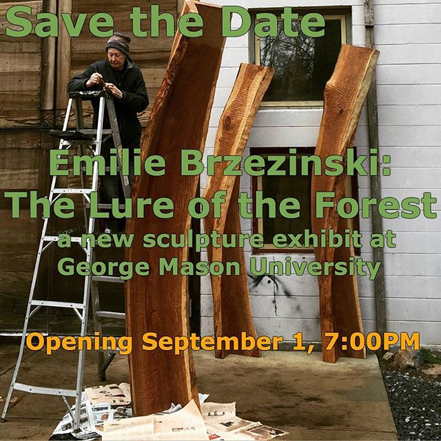 Save the Date 9/1/16 - new #sculpture exhibit featuring many recent and past works at @georgemasonu School of Arts Fine Arts Gallery. #wood #woodworking #nature #art #gmu #dcevents