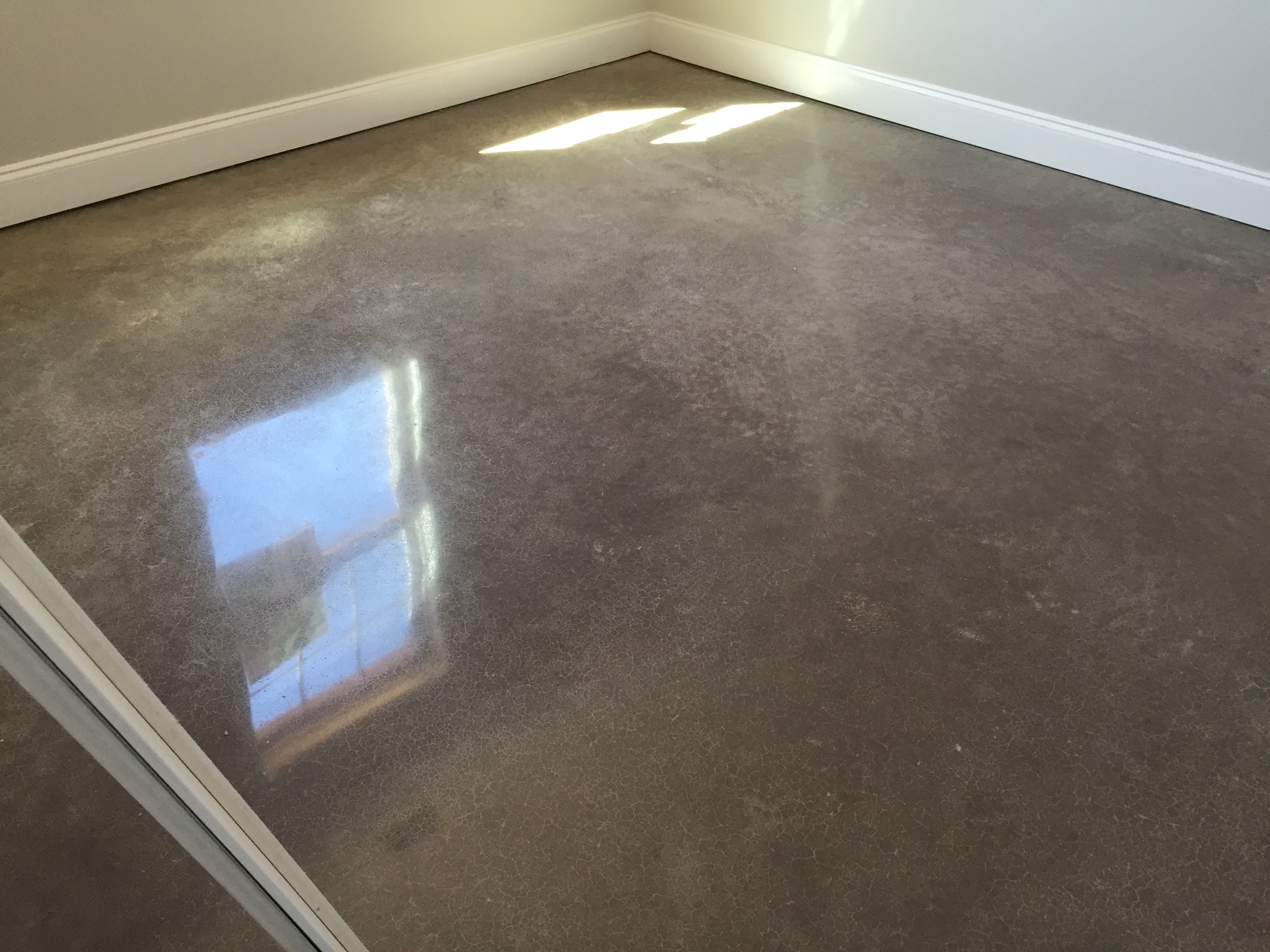 Mocha Polished Concrete