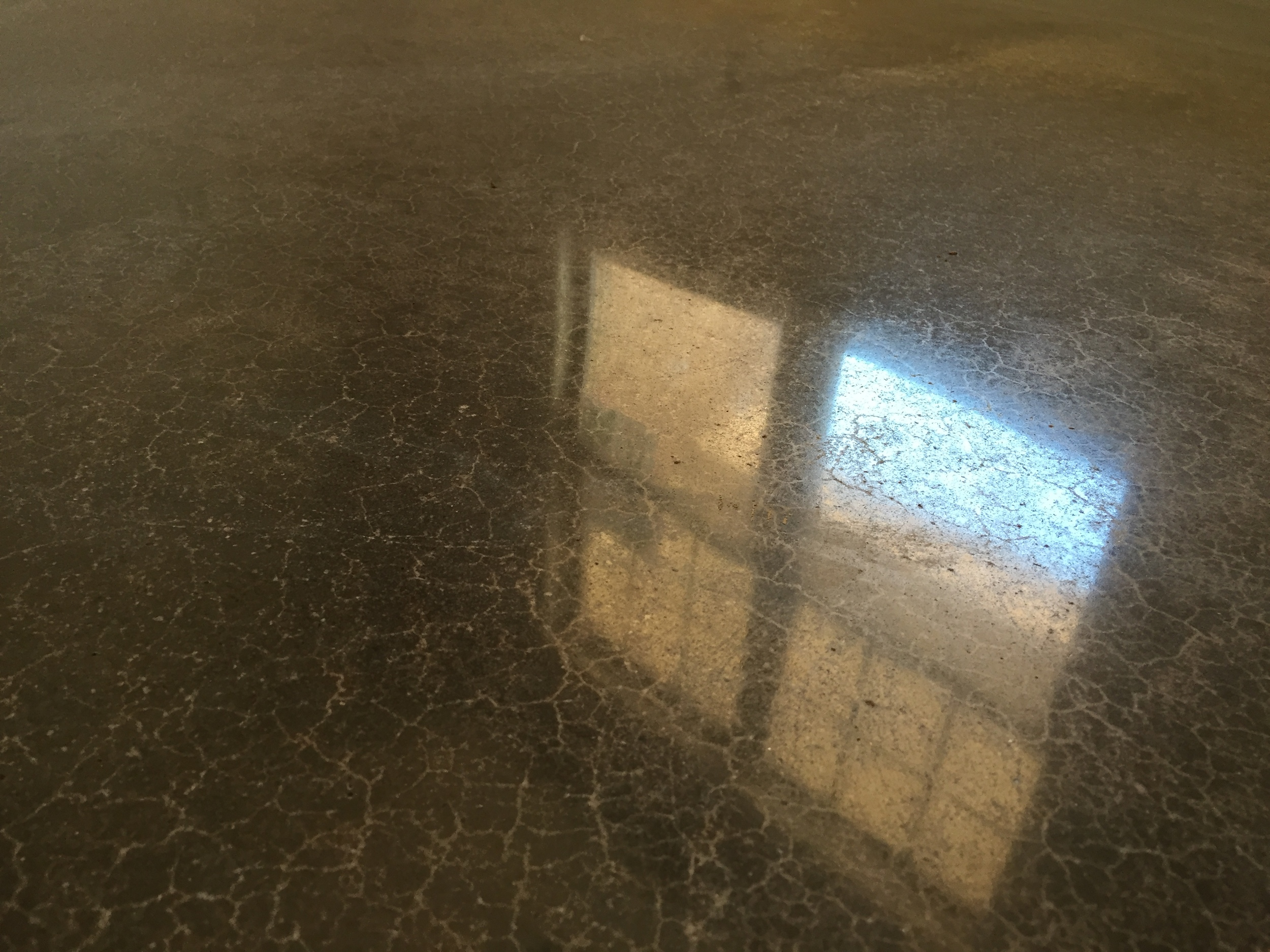 Polished Concrete in Mocha