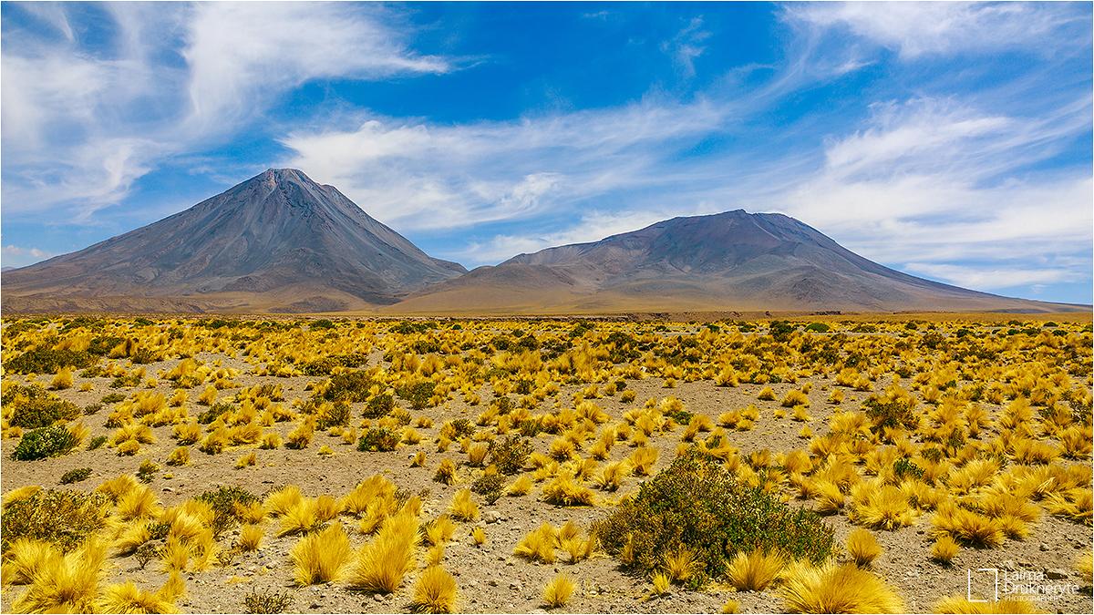 Atacama por Laima Drukneryte