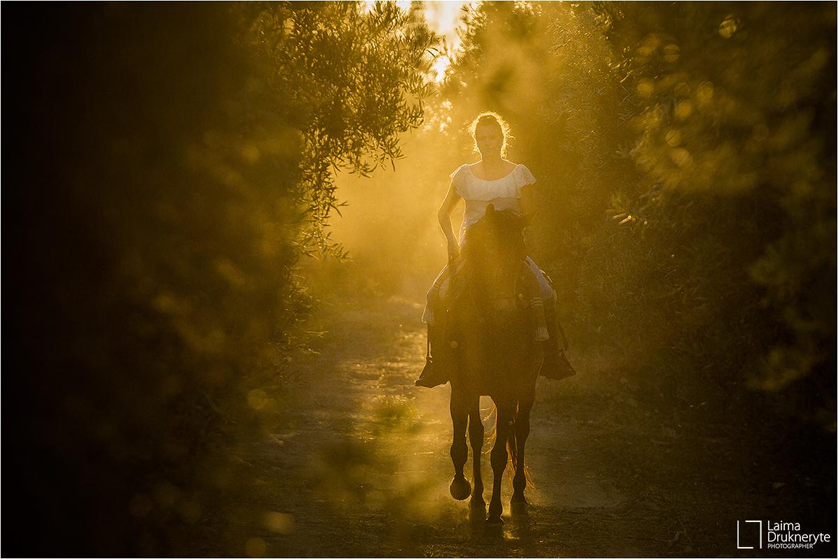 Los susurradores de caballos - Antequera, 2019