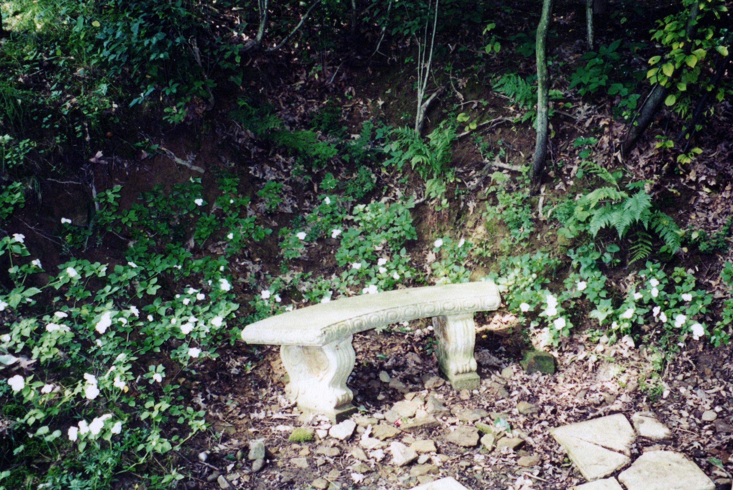 bench web.jpg