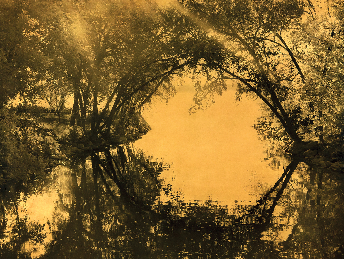 Joyce Tenneson,  Circle Reflection with Trees , 2012, Mixed media on plexiglas, 30h x 40w in. $8,750