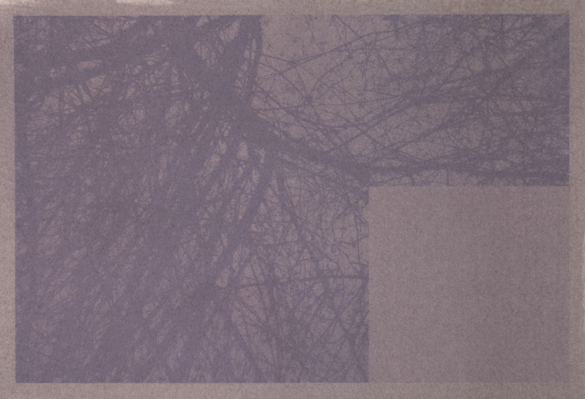 D. M. Witman,  Missing Peace/Piece , Anthotype from Maine blueberry printed on Rives BFK, 8 x 12 inches