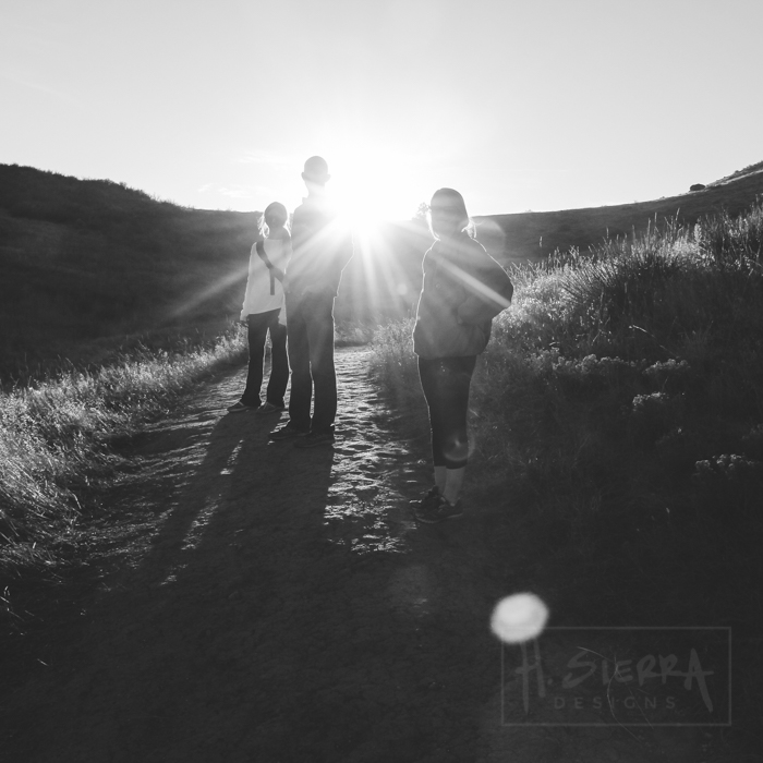 Dirt Roads & Sunlight (Ft. Collins, Colorado)
