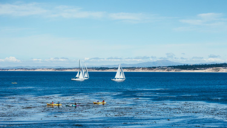 Boards & Boats (California, USA)