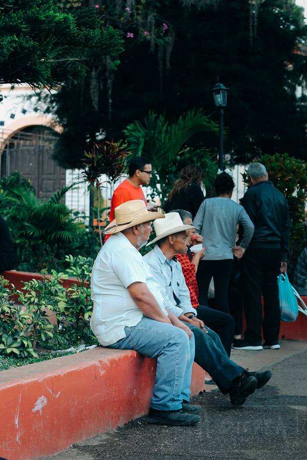 Old Men at Parks