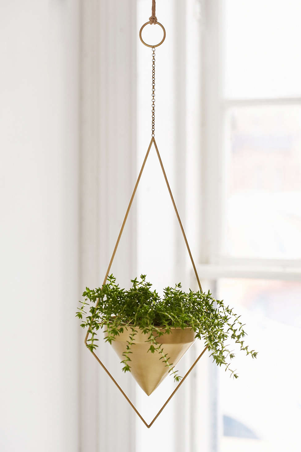 Thinking of hanging a couple of these   planter  s above the bathtub.