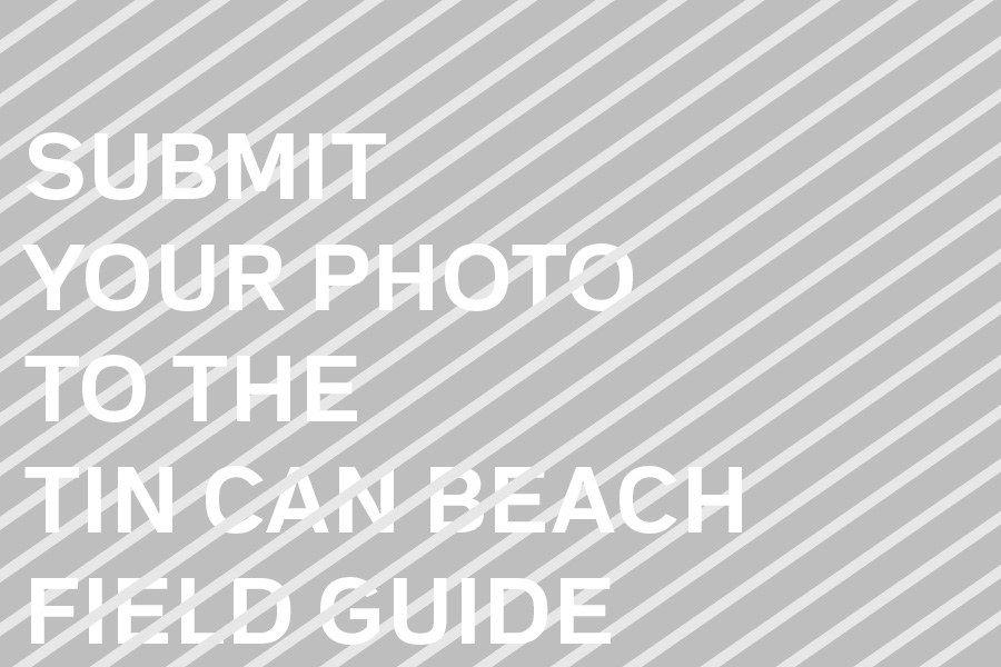 Photo at Tin Can Beach: Not Yet Submitted