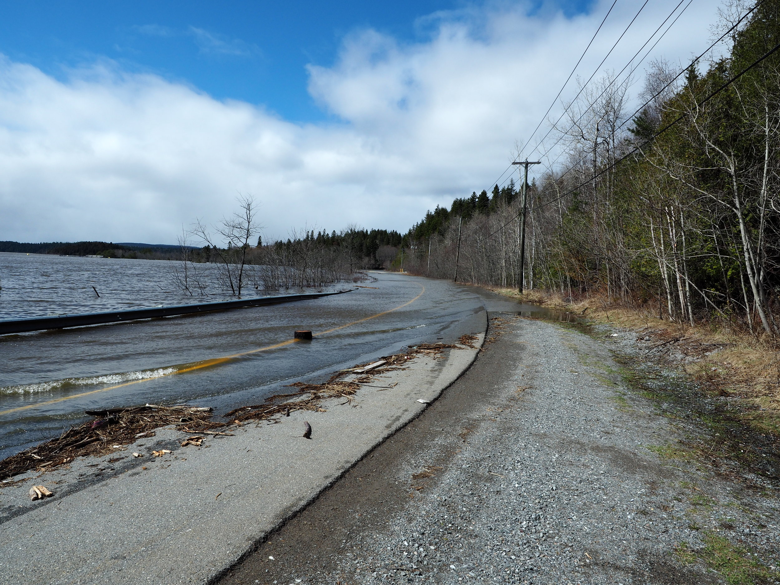 Kennebecasis Drive, 2019.