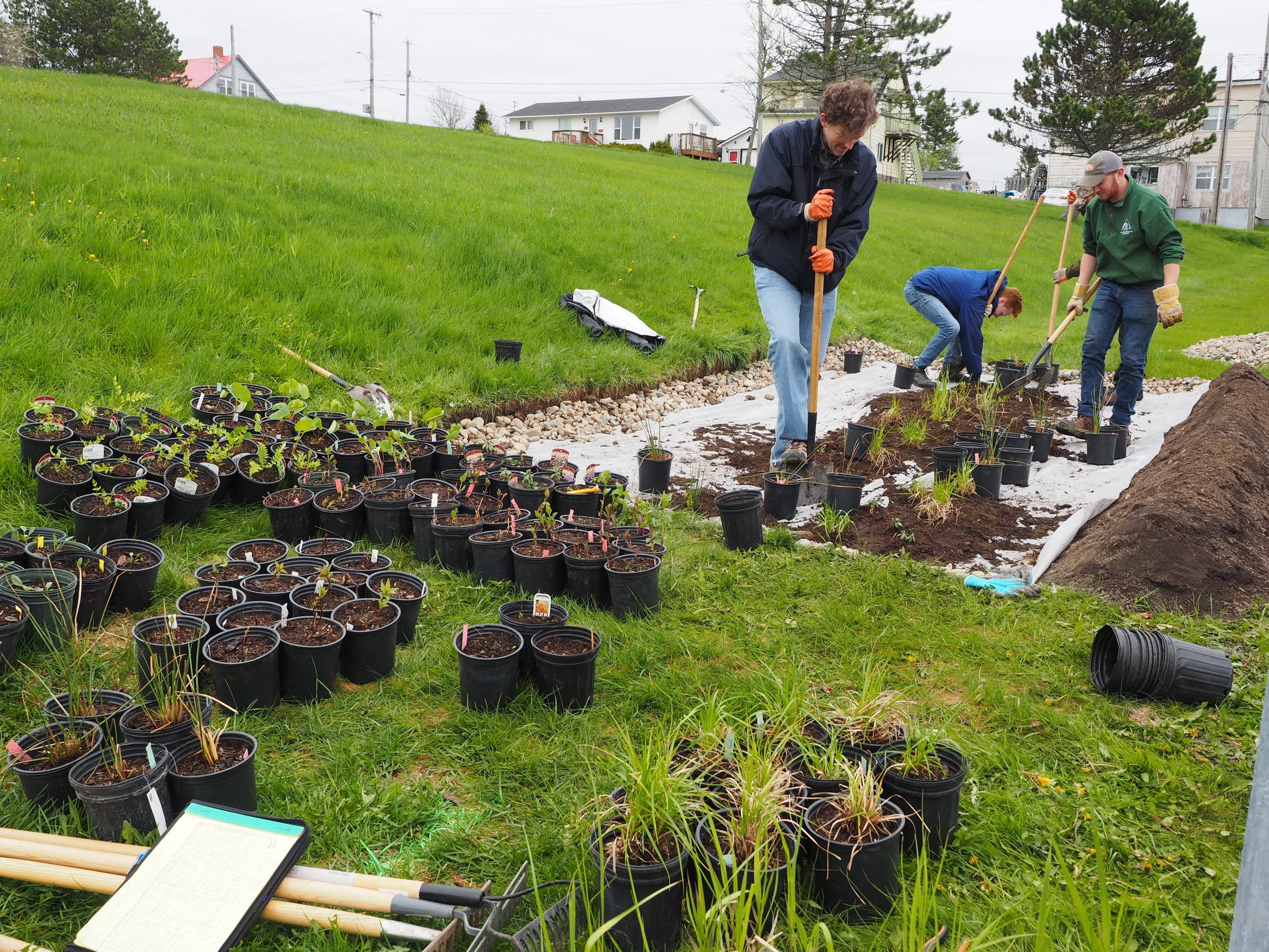 Volunteers planting 200 perennial flowers, grasses and ferns to go into the garden.
