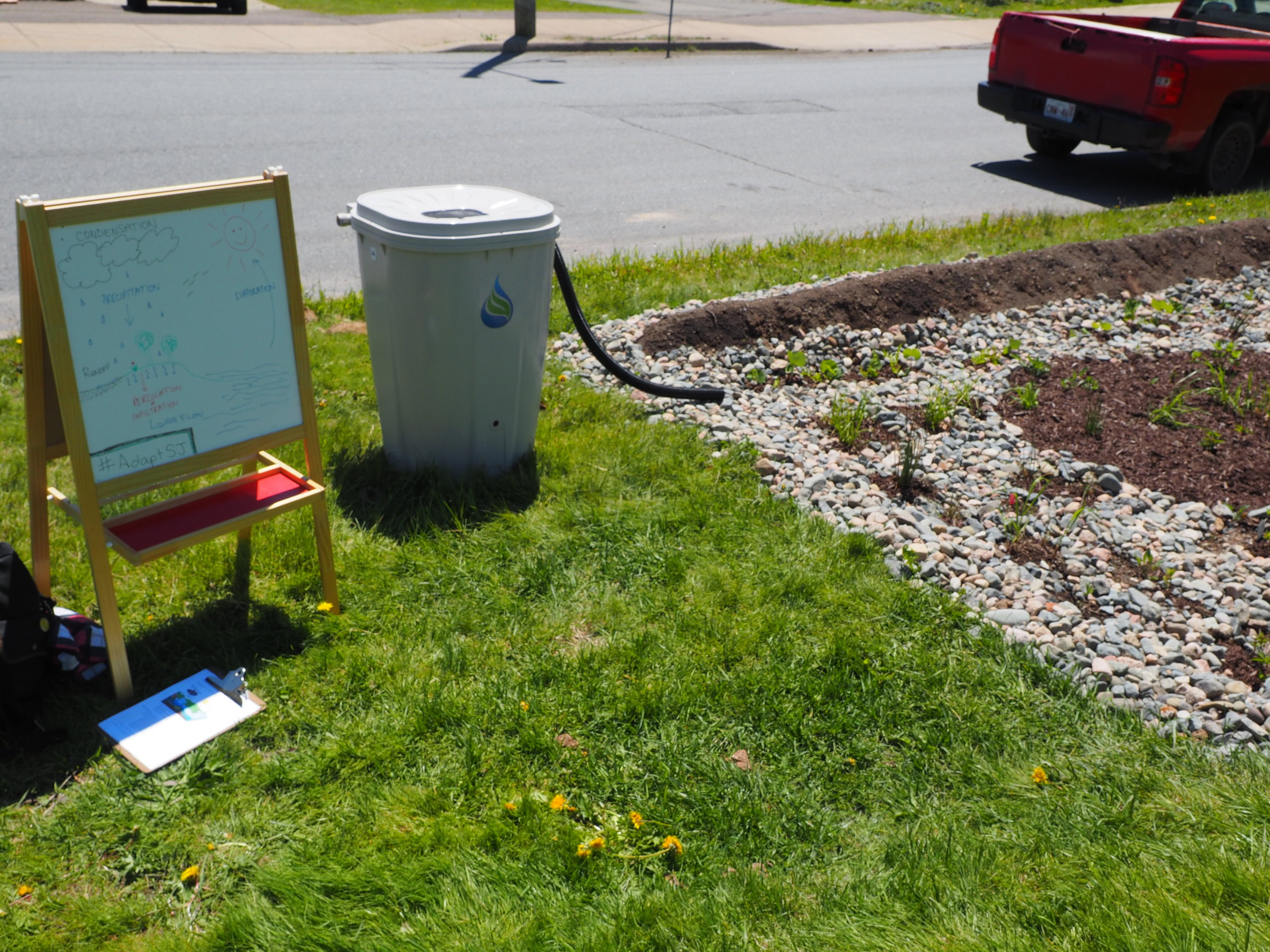 ACAP Saint John rain garden and rain barrel demonstration.