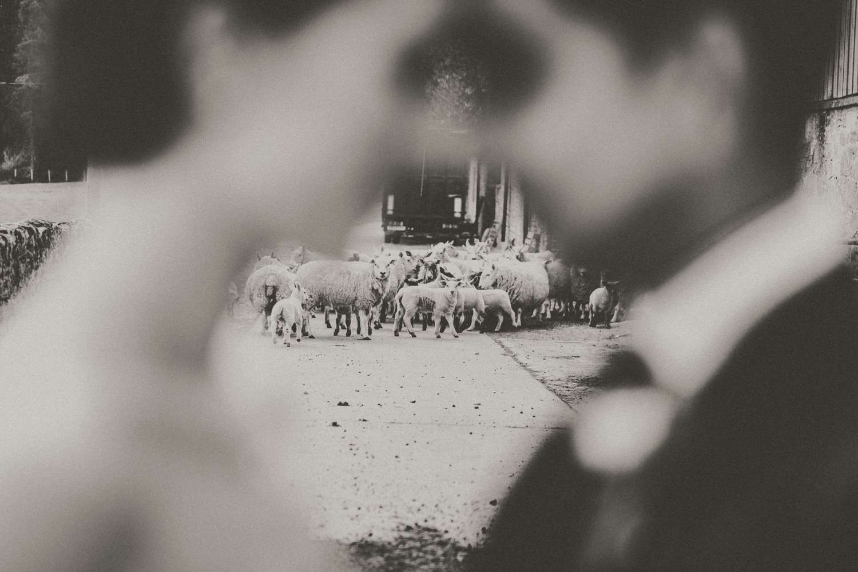 Hindu-Wedding-Photography-Paul-Liddement-Wedding-Stories-48.jpg