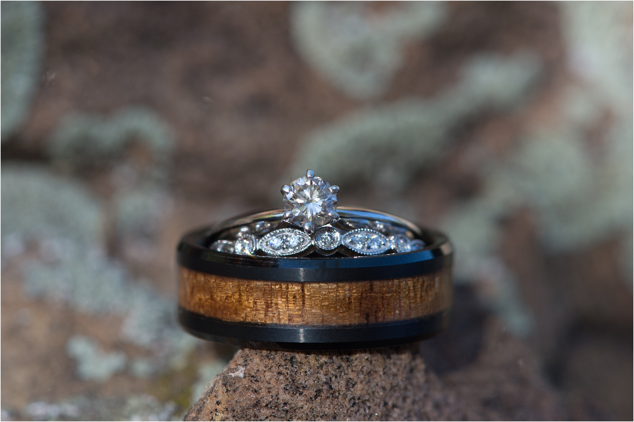 kayla kitts photography - albuquerque wedding photographer - hairpins and scissors - a cake odyssey - new mexico wedding photographer_0013.jpg