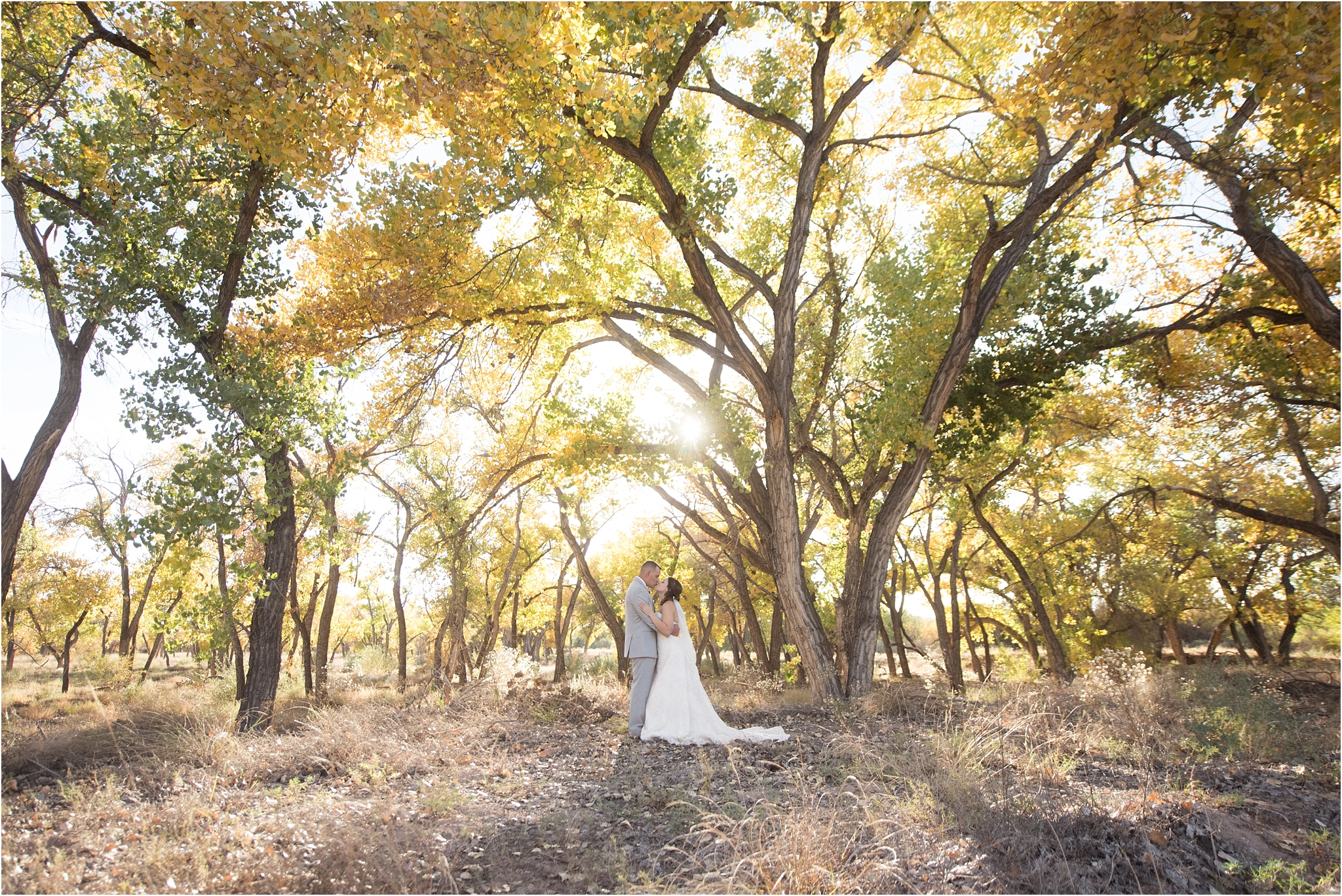 kayla kitts photography - albuquerque wedding photographer - hairpins and scissors - a cake odyssey - new mexico wedding photographer_0053.jpg