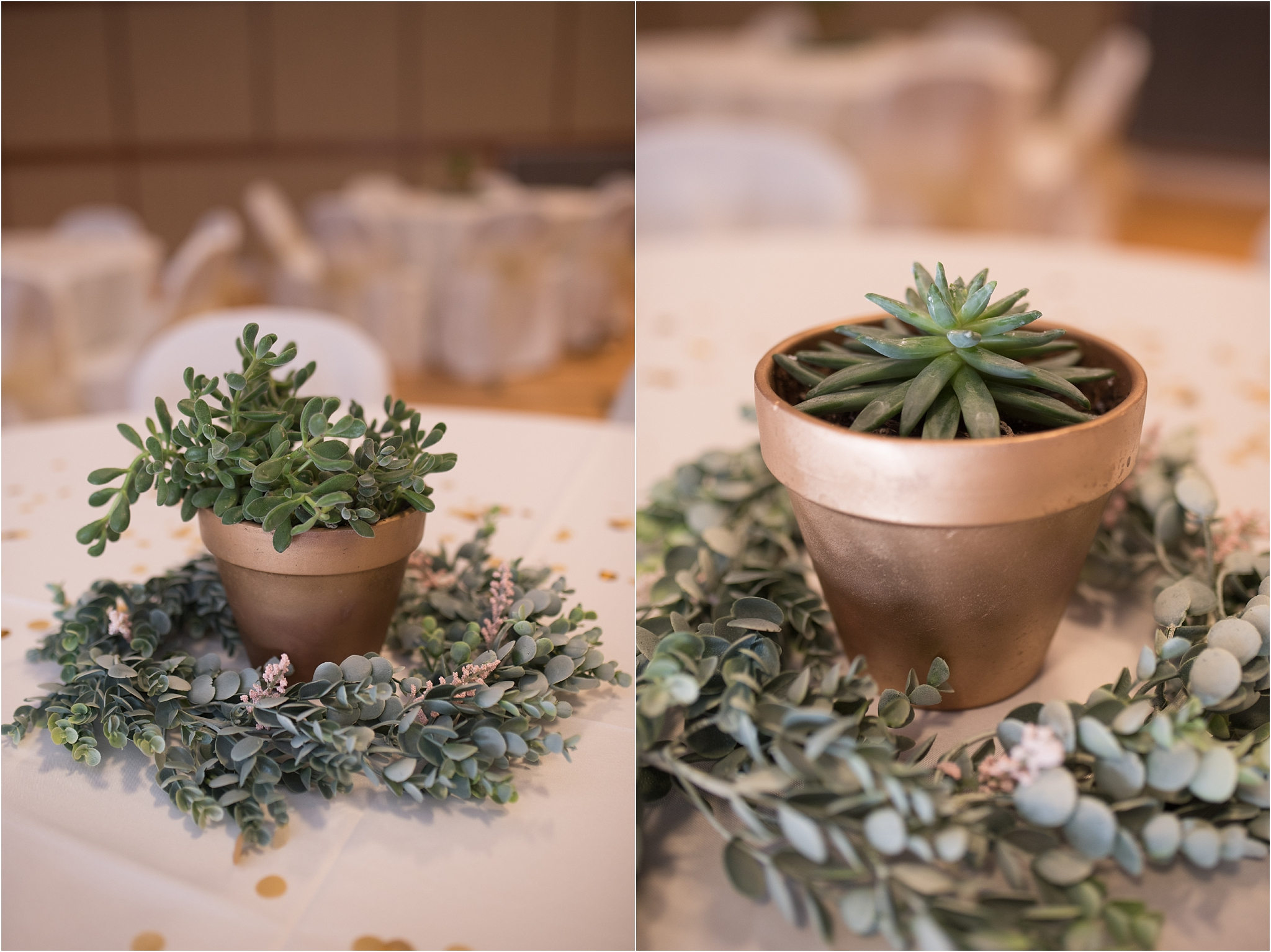 kayla kitts photography - albuquerque wedding photographer - hairpins and scissors - a cake odyssey - new mexico wedding photographer_0123.jpg