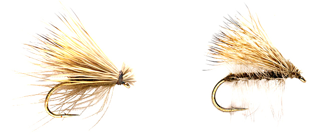 Caddis, sized 10-18 and I carry in a few colors from tan to burnt orange