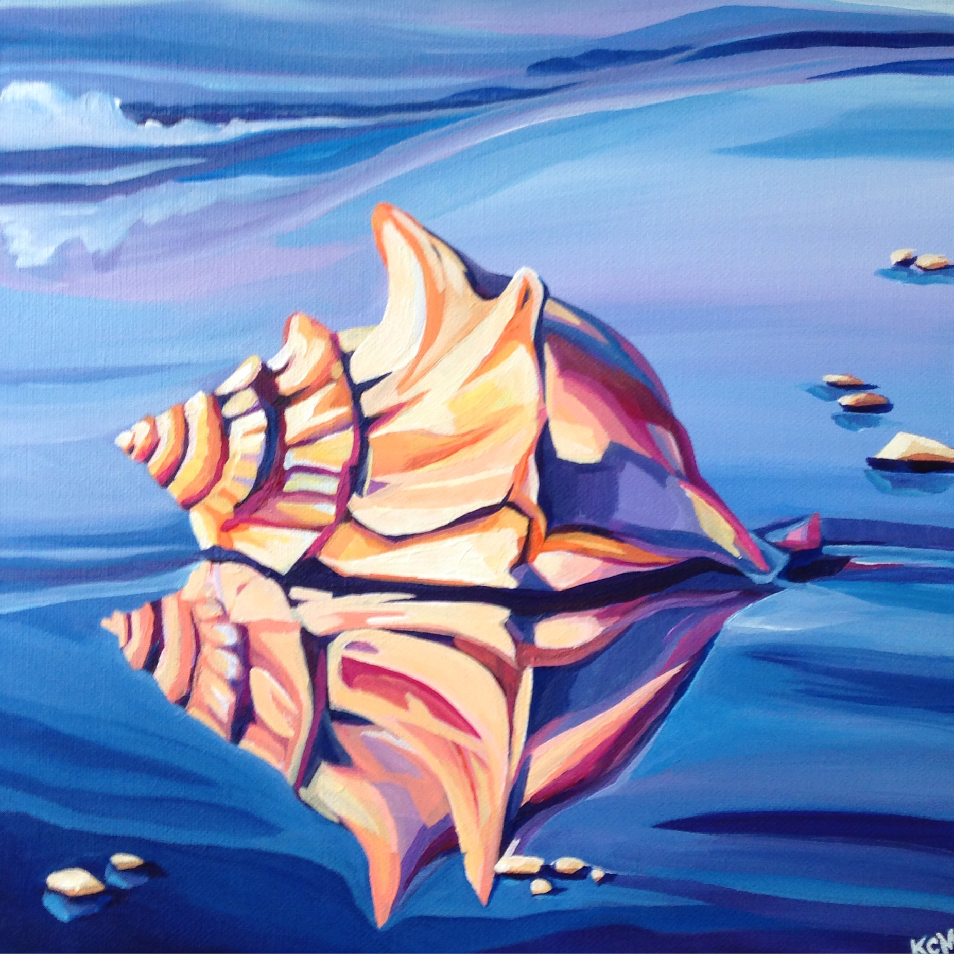 """""""Conch Reflection"""""""