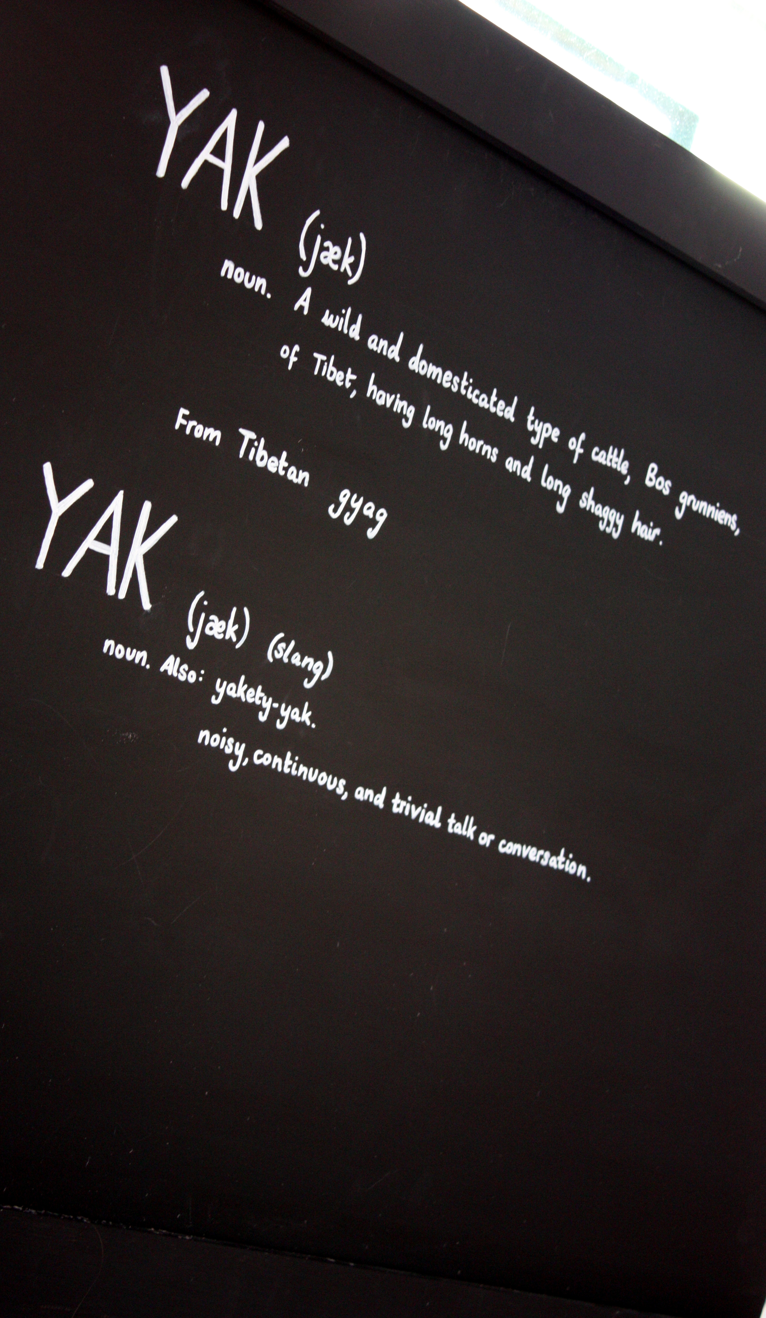 information about YAKs