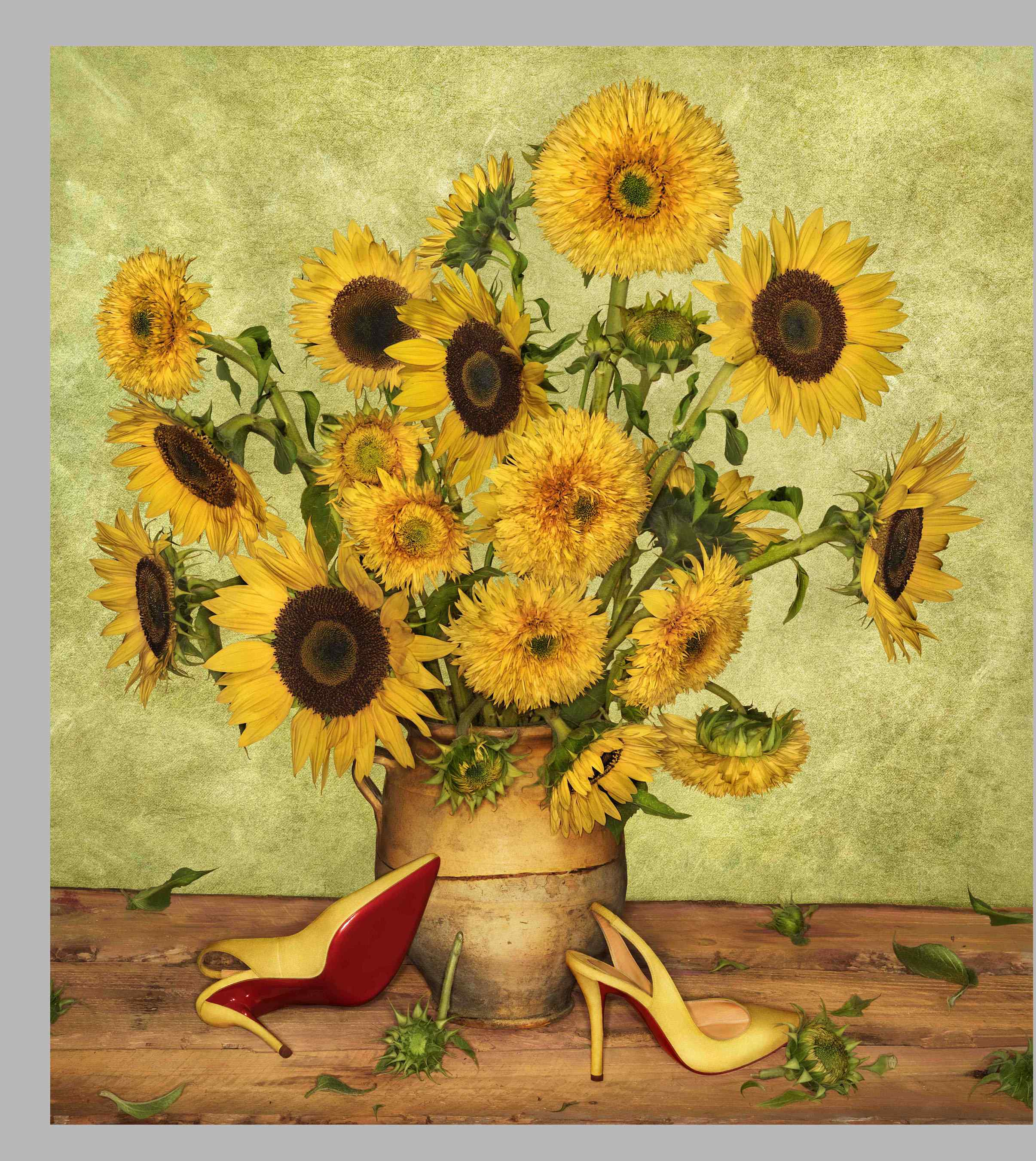 SS14 Louboutin Look Books Van Gogh _ Photographer Peter Lippman.jpg