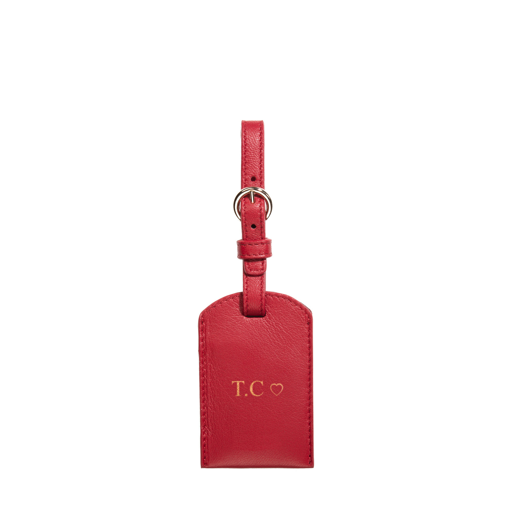 TAG TO GO LUGGAGE_cabernet A front.jpg