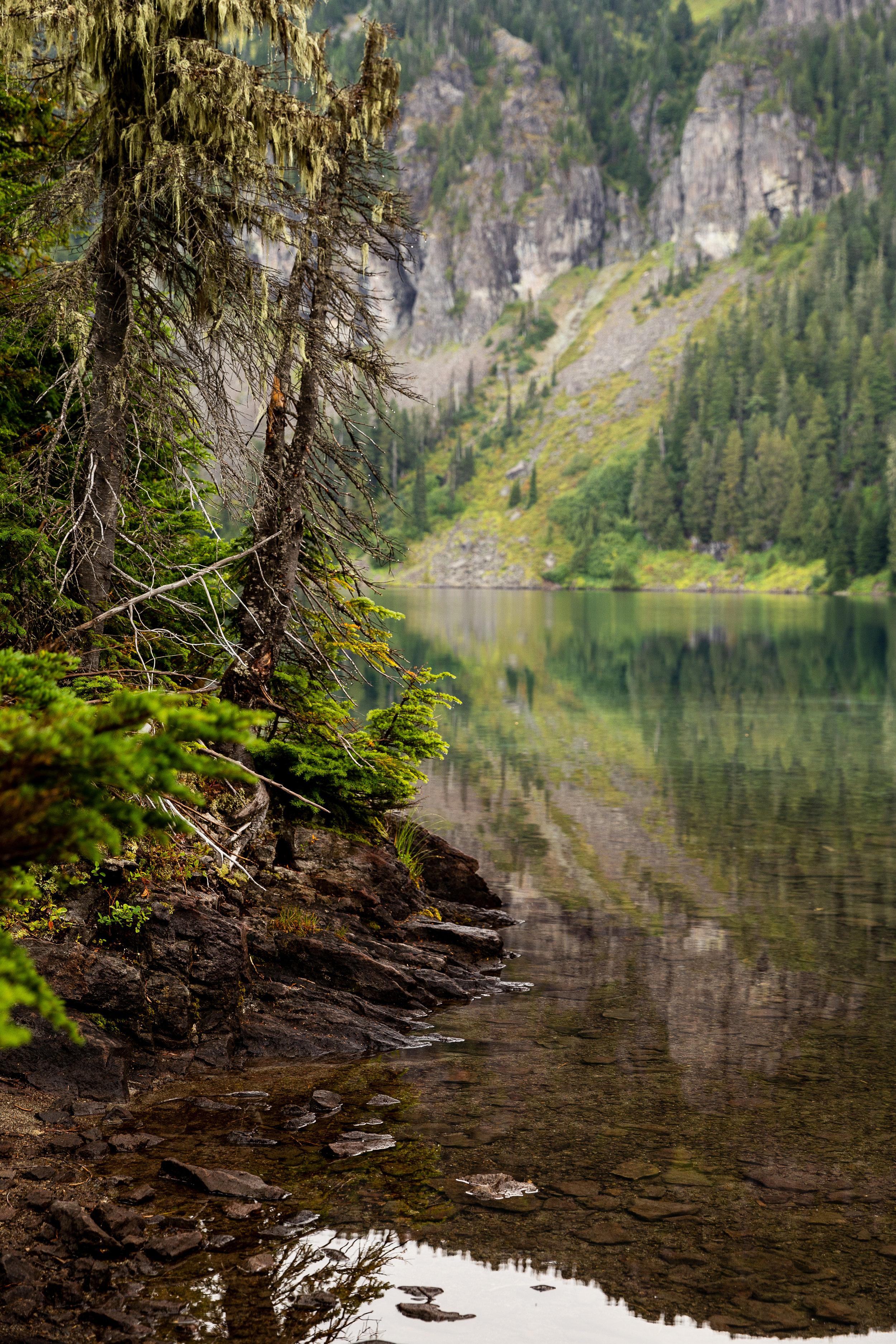 September 6 2019 mowich lake mt rainier carlos aventuras jenny l miller-129.jpg