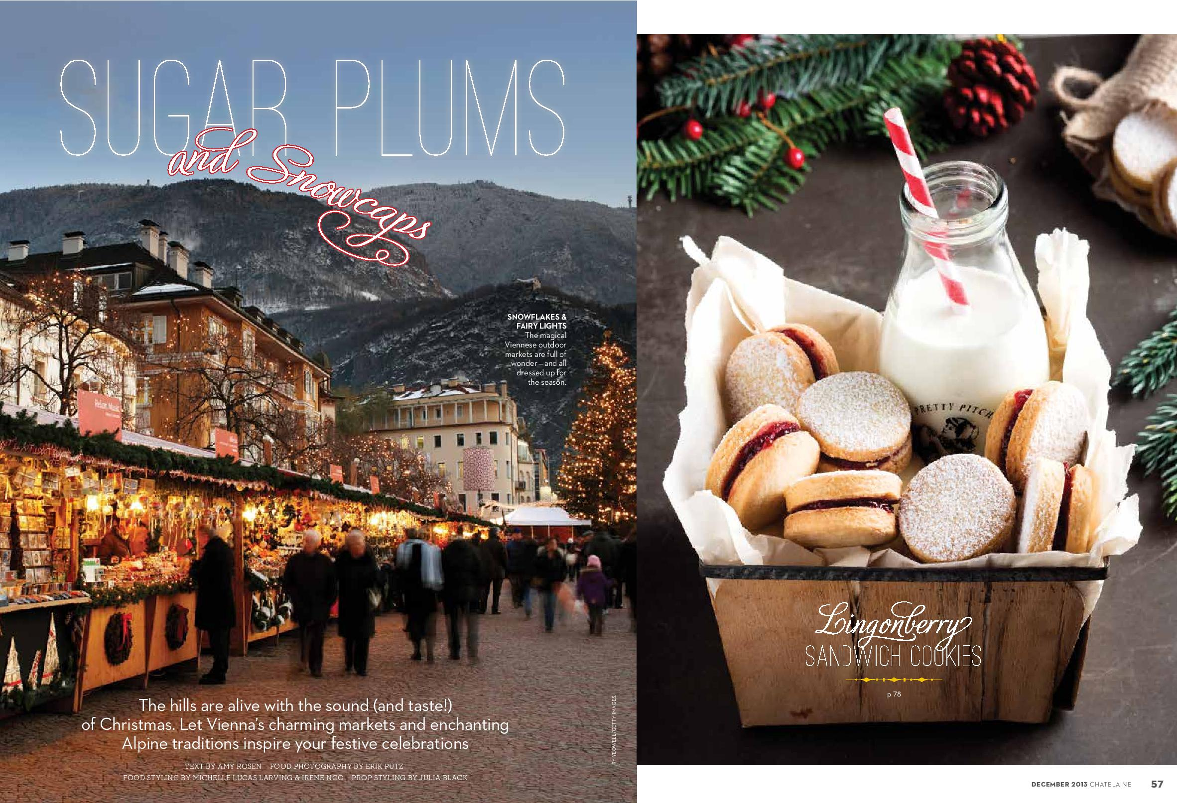 cookies in vienna dec 2013-page-001.jpg