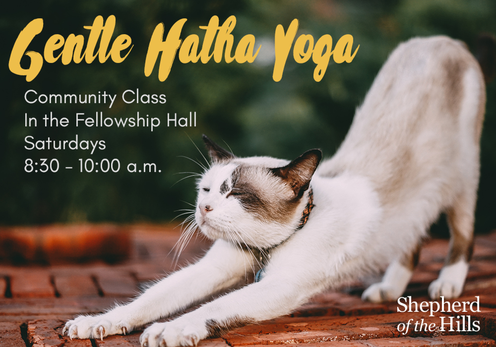 SOH---Event-Powerpoint---Gentle-Hatha-Yoga.jpg
