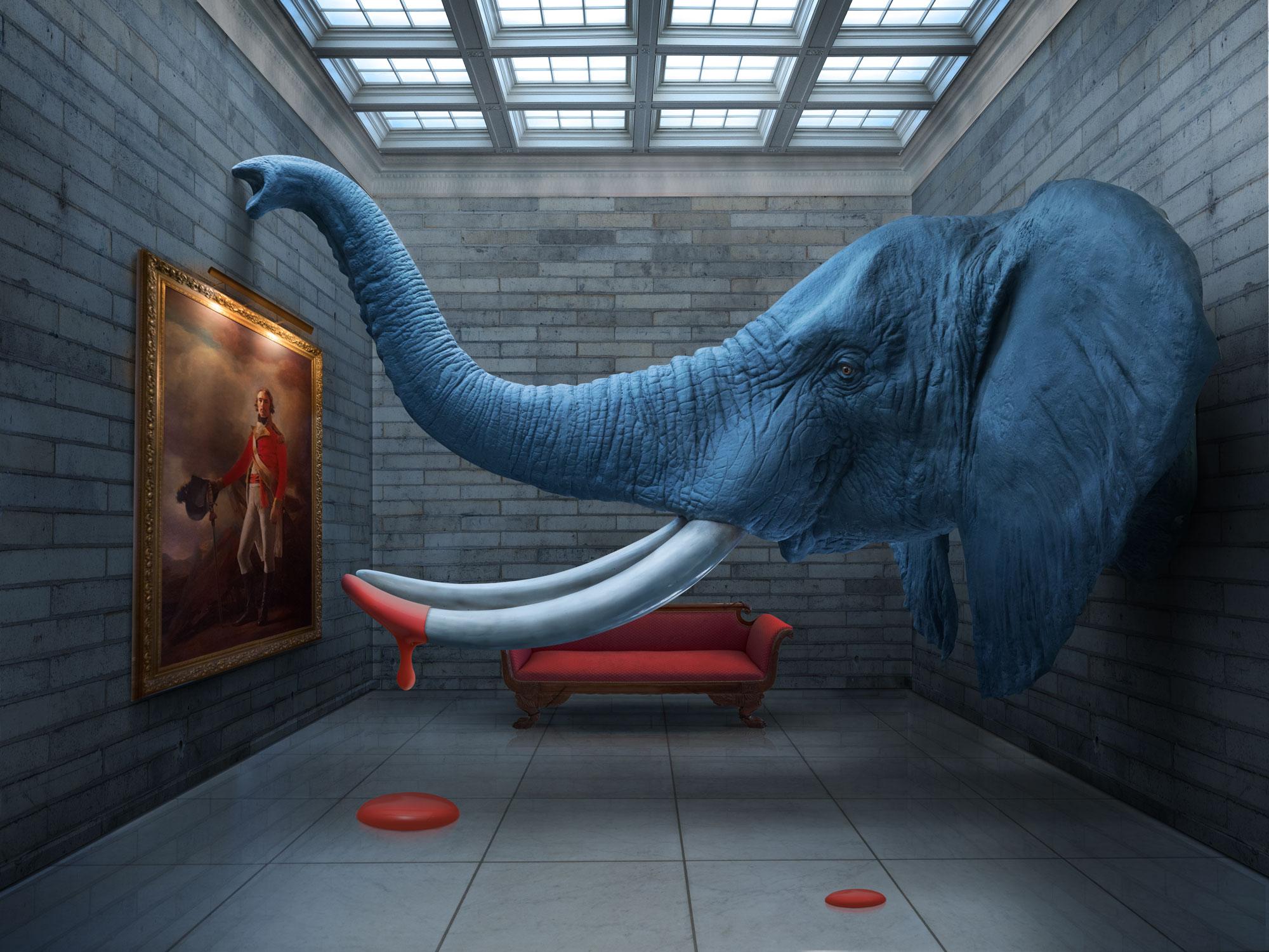 Elephant_BoxProject_DiCola_web.jpg
