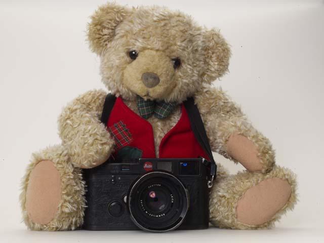 teddy baer 13856.jpg