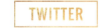 blog-social-twitter.png