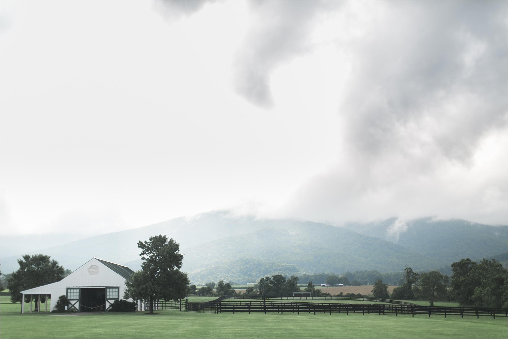 stephanie-yonce-charlottesville-virginia-king-family-vineyard-wedding-photos_0026.jpg