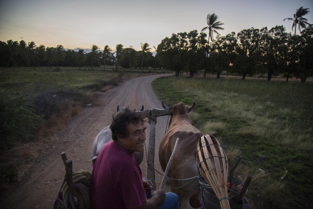 Por los terrenos de San Blas Atempa. Día de siembra con CHICO - RITO