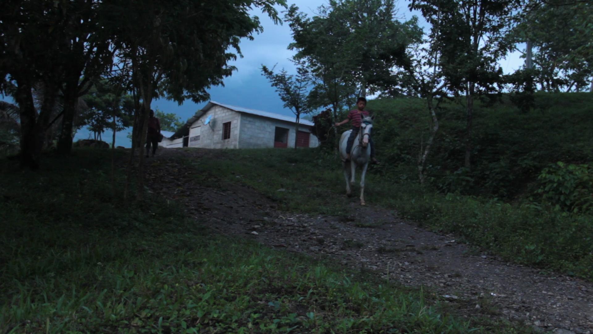 quenoserepita_1.jpg