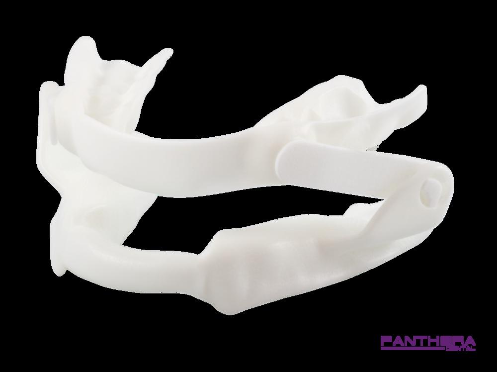 Panthera (1).png