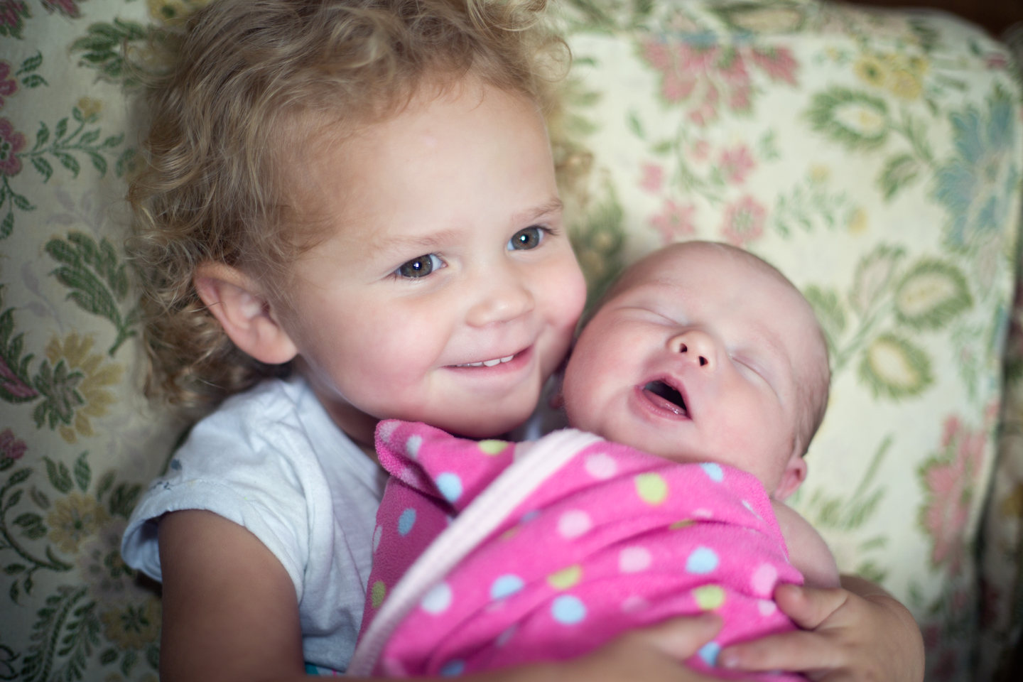 boston-photography-family-sisters-newborn-toddler.jpg