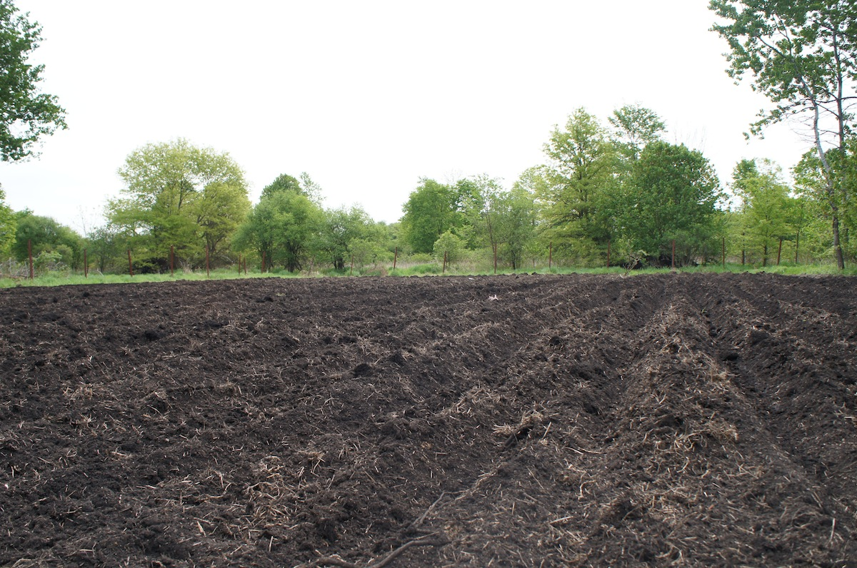 JPO Concepts - Farm To Table - Plowed Field
