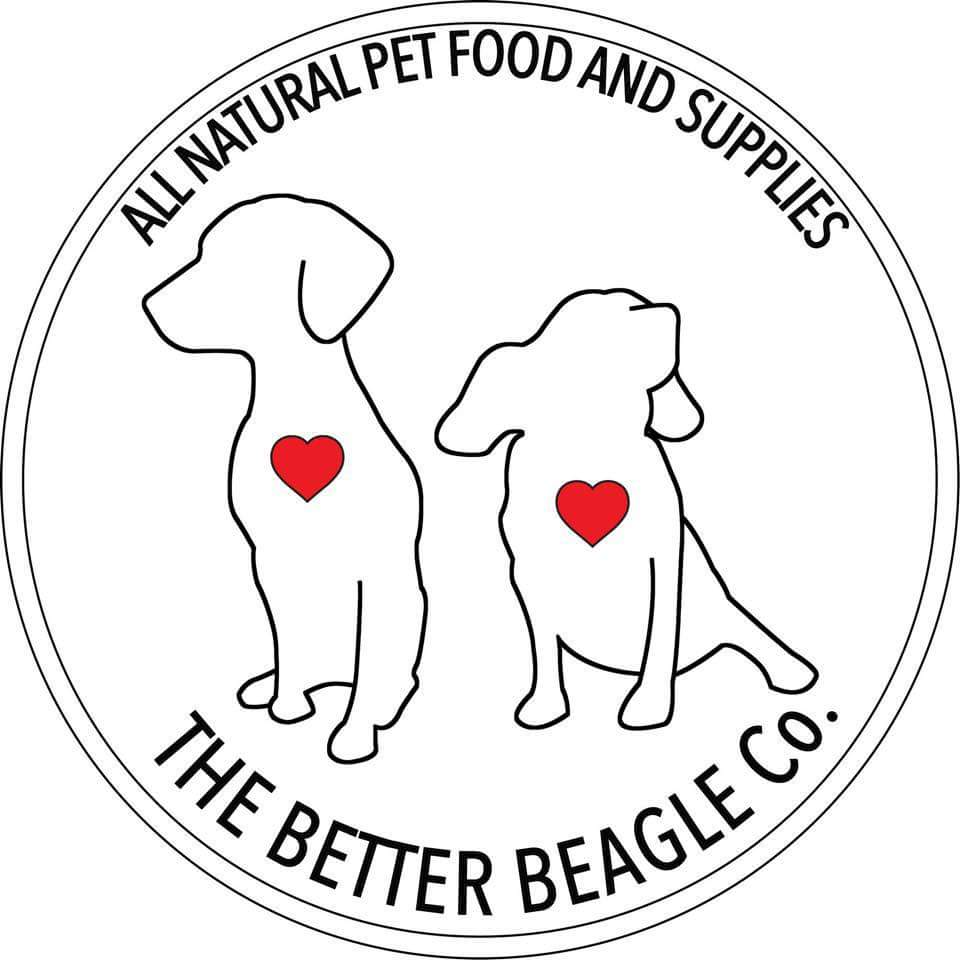 Better Beagle.JPG