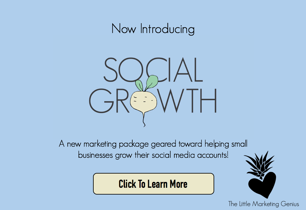 Social Growth For Small Business By Little Marketing Genius.png