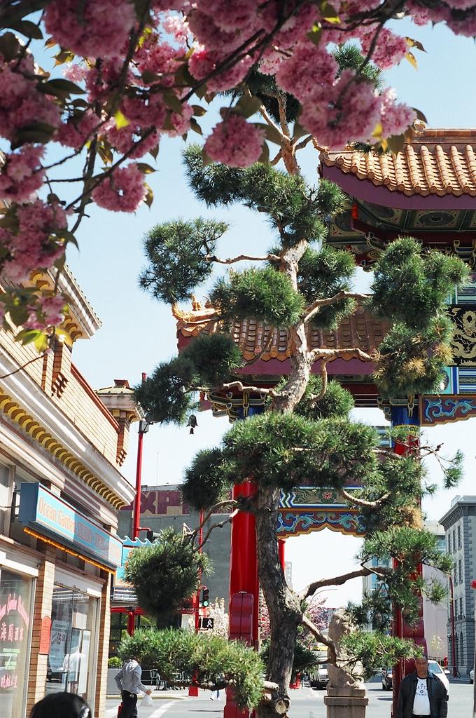 Victoria's Historic Chinatown
